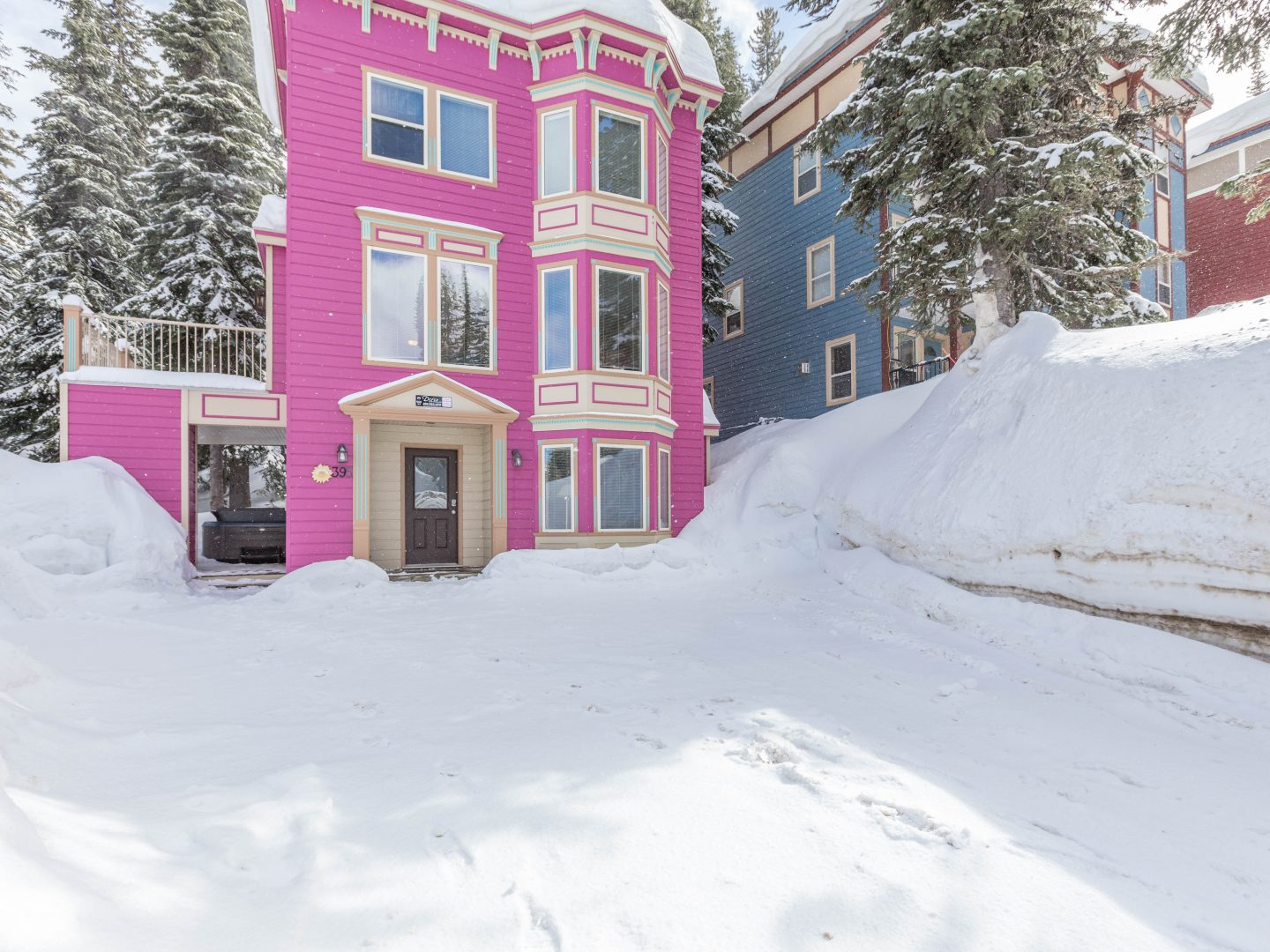 Silver Star Stays - Magenta Haus Whole House